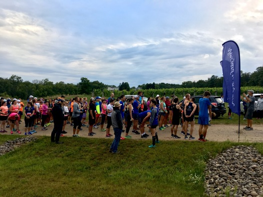 Vineyard to Bay 25k Race Recap - Run Leelanau