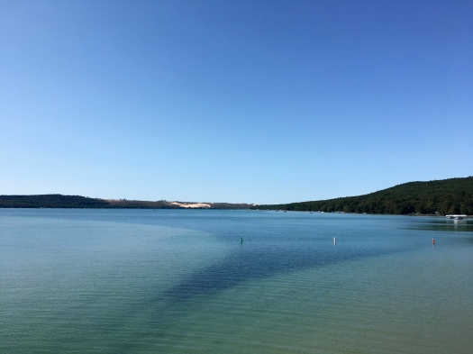 5 Reasons the Glen Arbor Solstice Half Marathon is the Bee's Knees - Run Leelanau